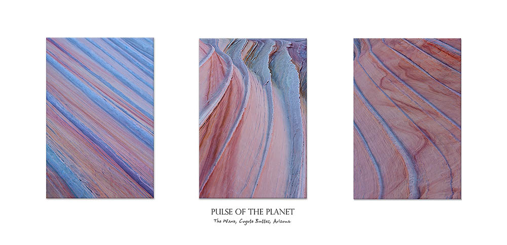 """Bart Carrig """"Pulse of the Planet"""" from a series of photos taken at """"The Wave"""", Coyote Buttes, Arizona"""